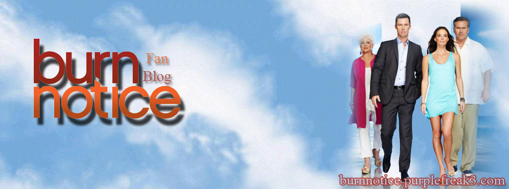 Burn Notice Season 4 Banner